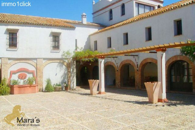 Country hotel Carmona Sevilla Andalusia for sale - the patio